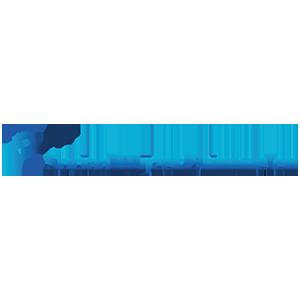 Logo Sociaal Wijzer Drimmelen